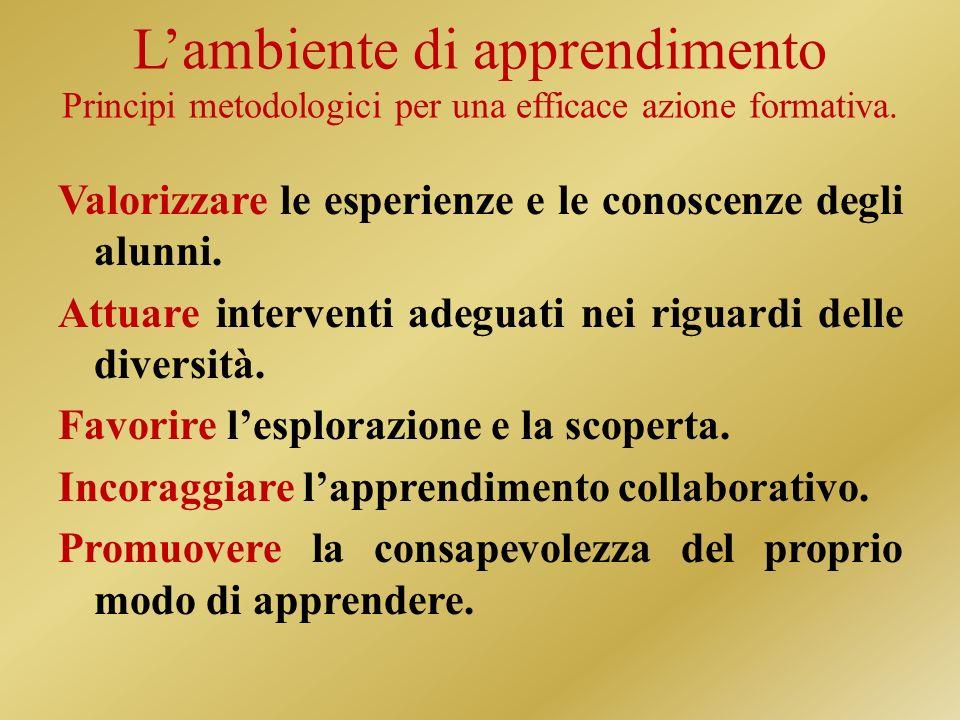 L'ambiente di apprendimento Principi metodologici per una efficace azione formativa.