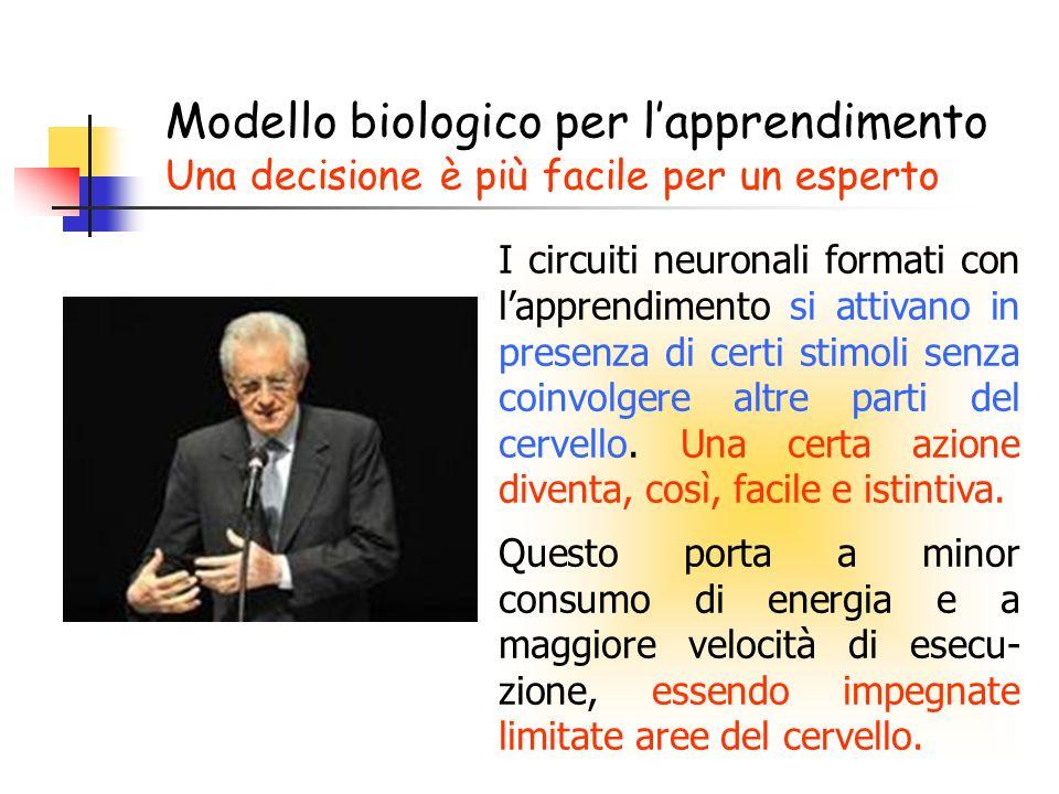 Modello biologico per l'apprendimento Una decisione è più facile per un esperto