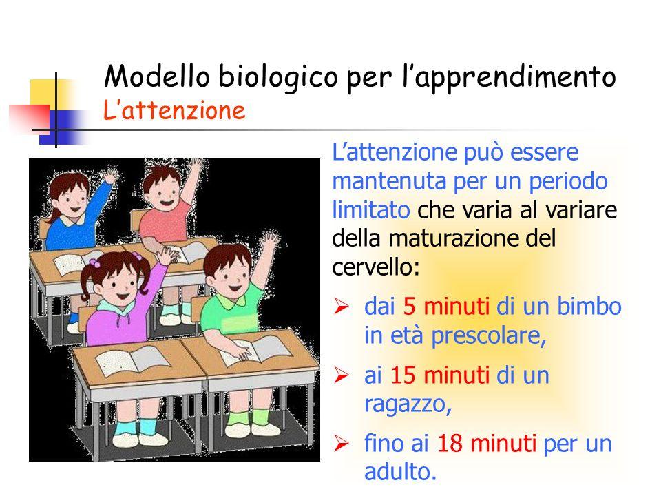 Modello biologico per l'apprendimento L'attenzione