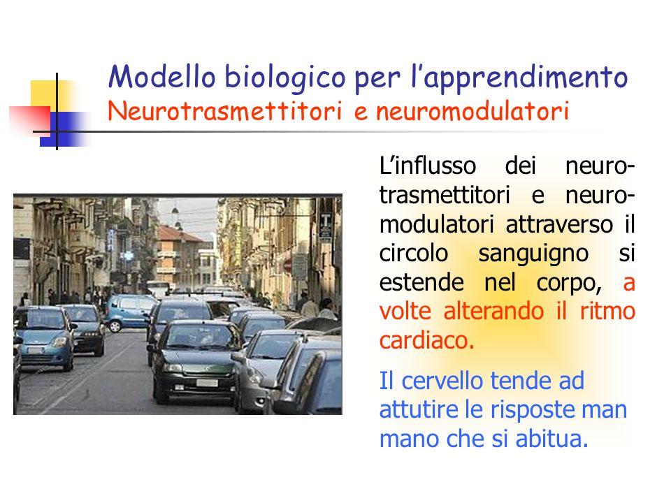 Modello biologico per l'apprendimento Neurotrasmettitori e neuromodulatori