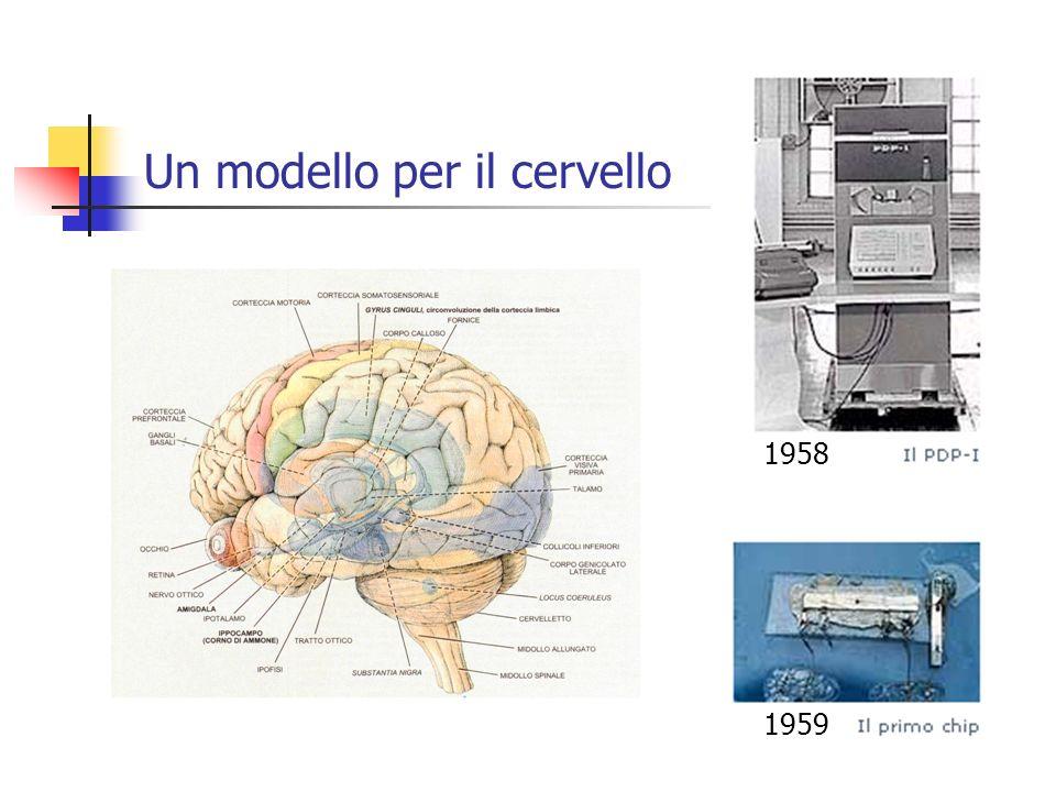 Un modello per il cervello