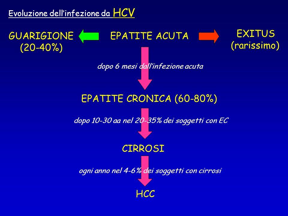 EXITUS (rarissimo) GUARIGIONE (20-40%) EPATITE ACUTA