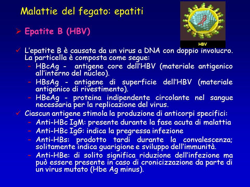 Malattie del fegato: epatiti