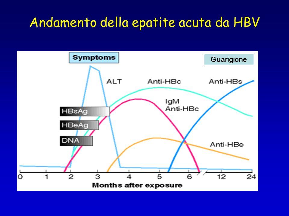 Andamento della epatite acuta da HBV