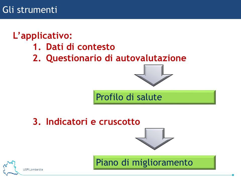 Gli strumenti L'applicativo: Dati di contesto. Questionario di autovalutazione. Profilo di salute.