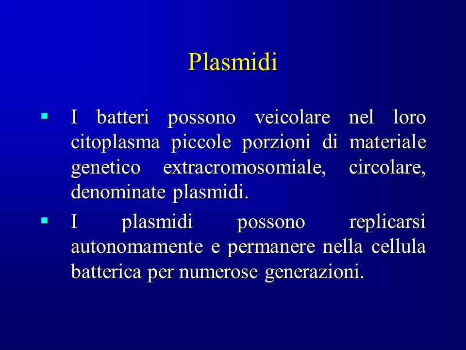 Plasmidi I batteri possono veicolare nel loro citoplasma piccole porzioni di materiale genetico extracromosomiale, circolare, denominate plasmidi.