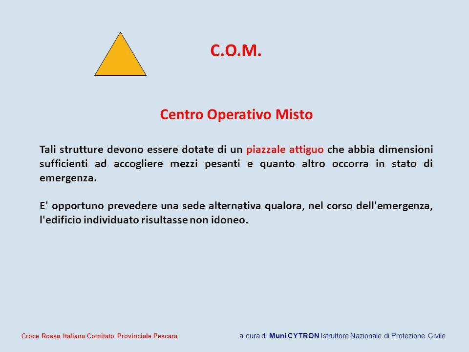 Centro Operativo Misto