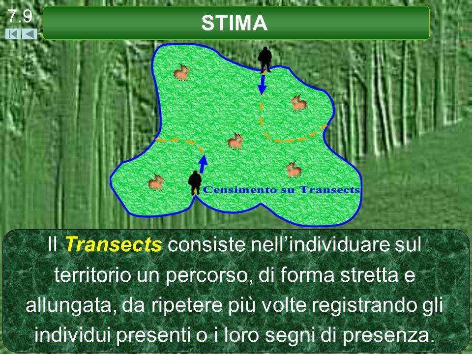 7.9 STIMA.