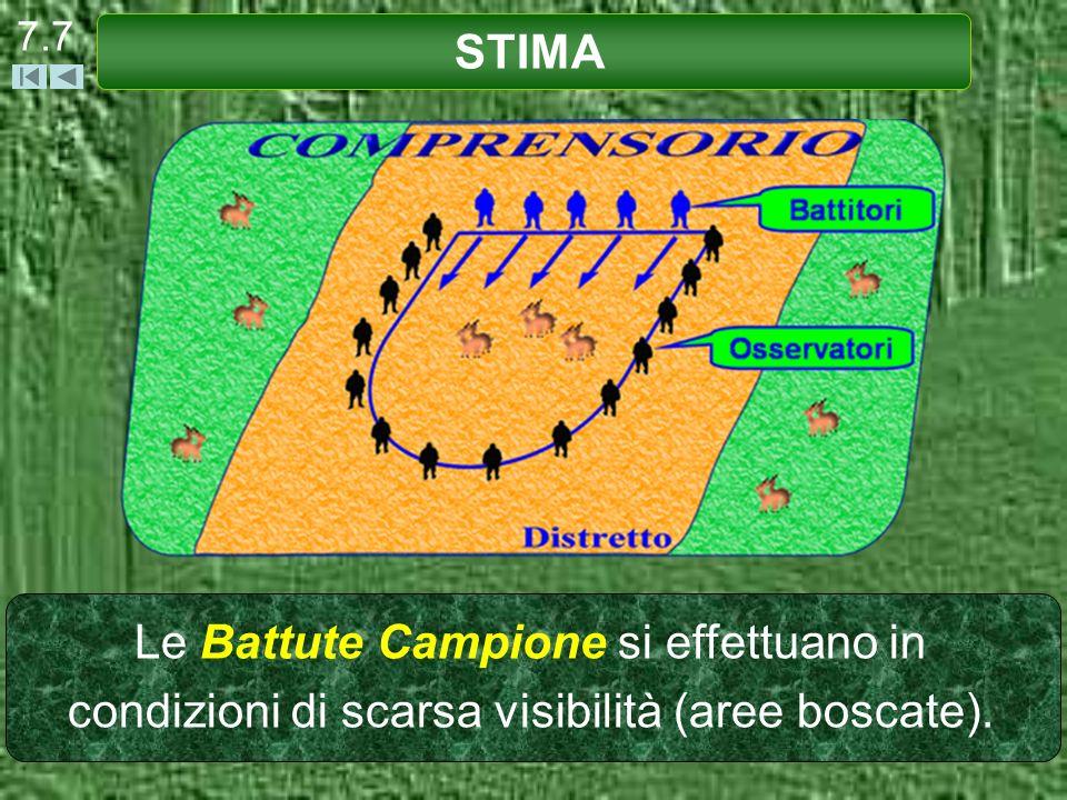 7.7 STIMA Le Battute Campione si effettuano in condizioni di scarsa visibilità (aree boscate).