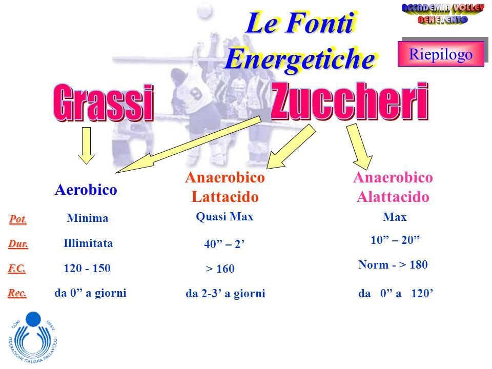 Le Fonti Energetiche Grassi Zuccheri Riepilogo Anaerobico Lattacido