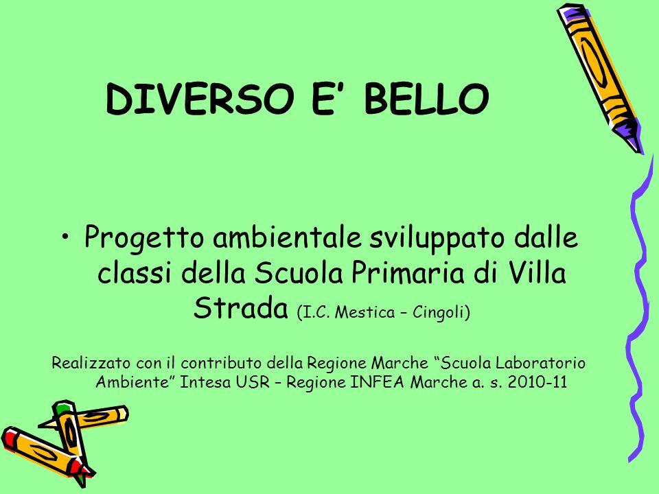 DIVERSO E' BELLO Progetto ambientale sviluppato dalle classi della Scuola Primaria di Villa Strada (I.C. Mestica – Cingoli)