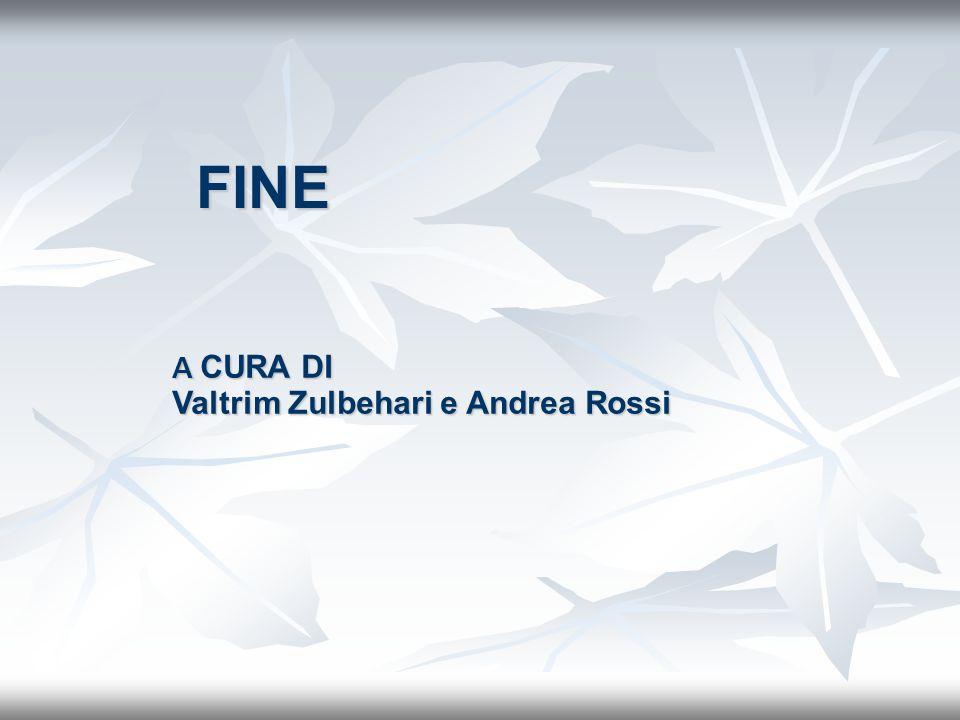 FINE A CURA DI Valtrim Zulbehari e Andrea Rossi