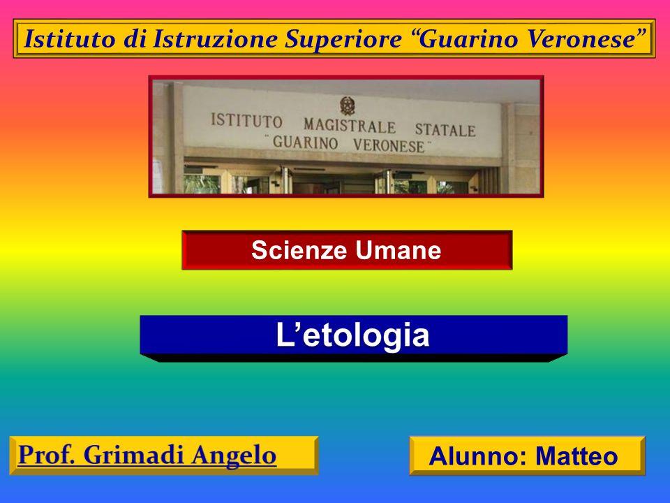 Istituto di Istruzione Superiore Guarino Veronese