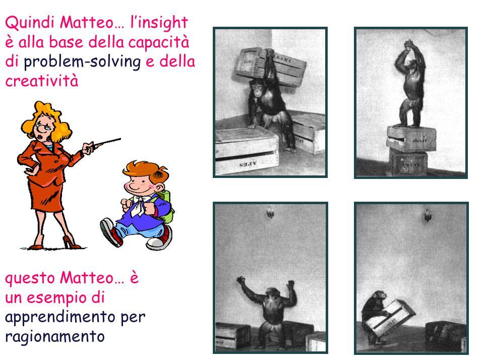 Quindi Matteo… l'insight è alla base della capacità di problem-solving e della creatività