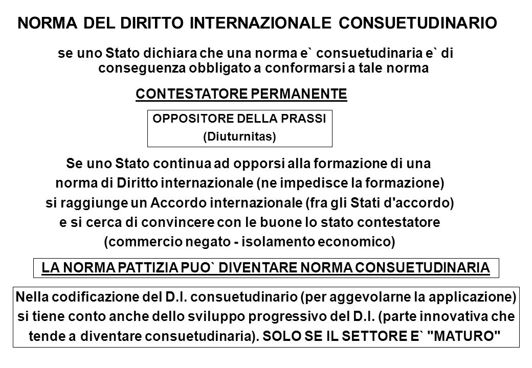 NORMA DEL DIRITTO INTERNAZIONALE CONSUETUDINARIO