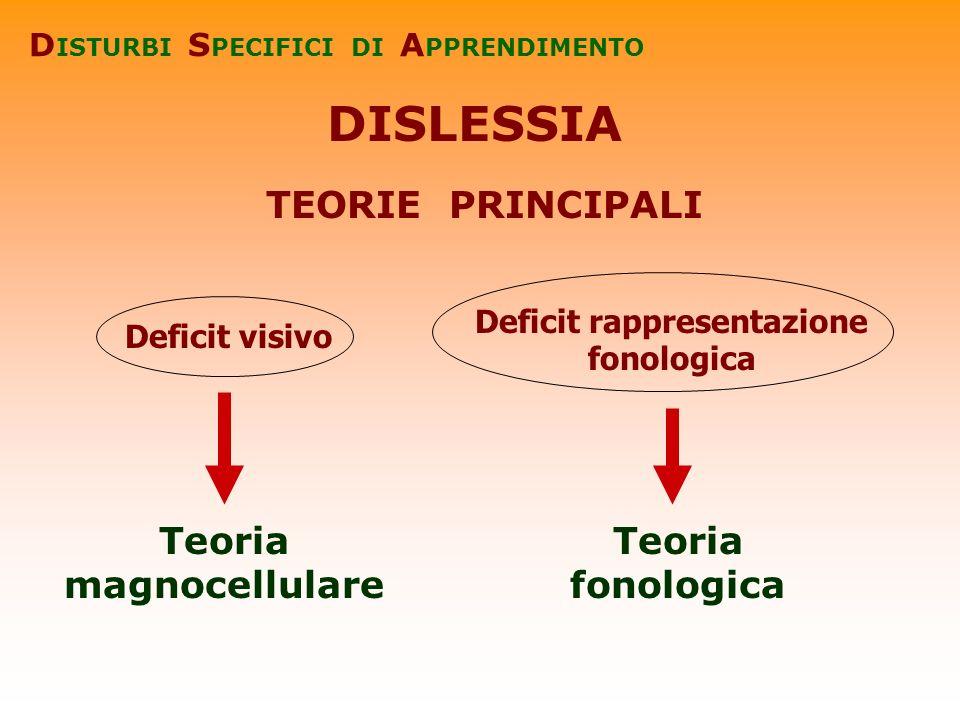 DISLESSIA TEORIE PRINCIPALI Teoria magnocellulare Teoria fonologica