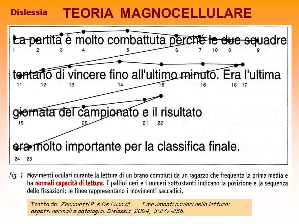 TEORIA MAGNOCELLULARE