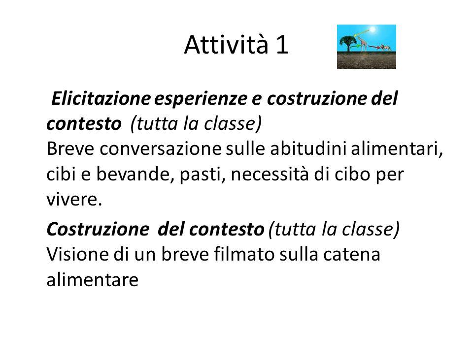 Attività 1