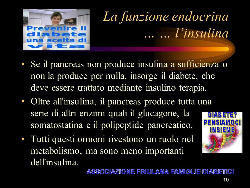 La funzione endocrina … … l'insulina