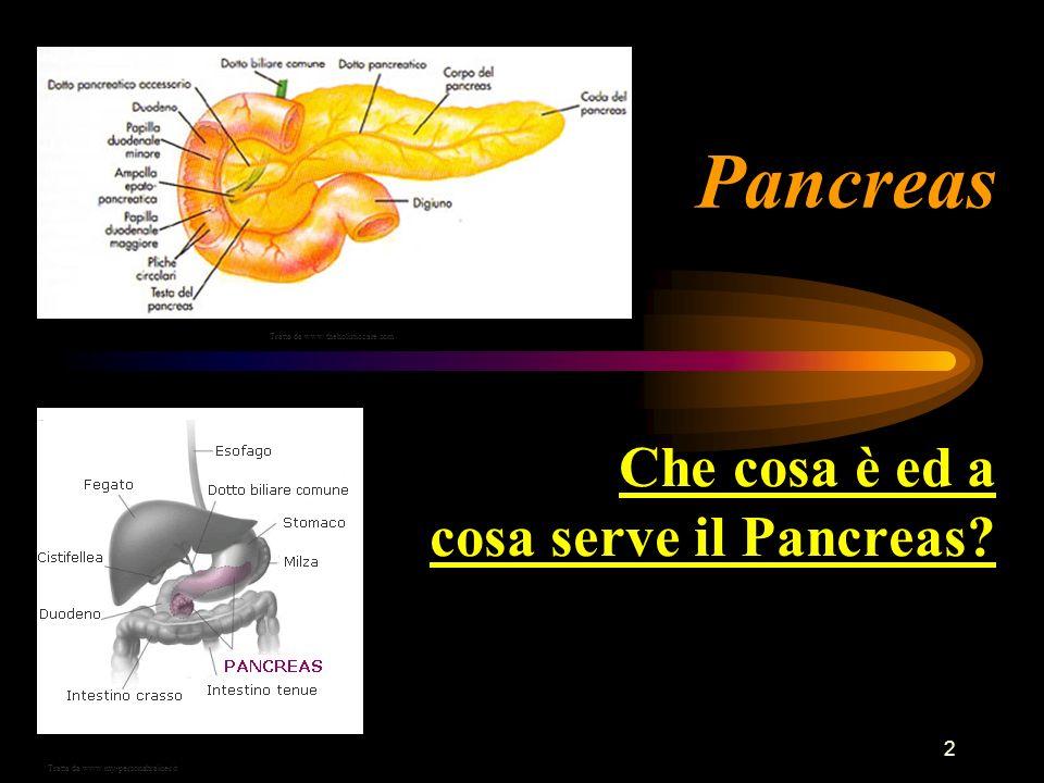 Che cosa è ed a cosa serve il Pancreas