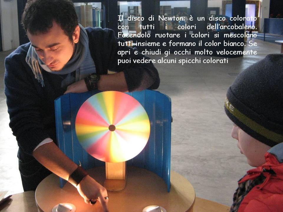 Il disco di Newton: è un disco colorato con tutti i colori dell'arcobaleno.