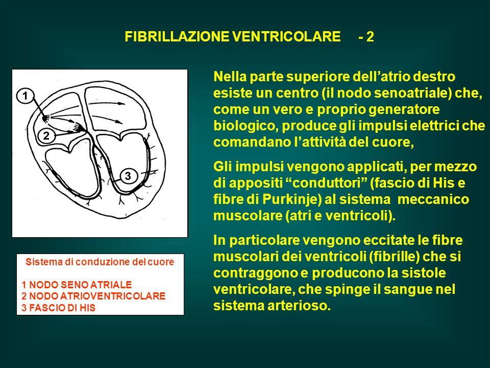 FIBRILLAZIONE VENTRICOLARE - 2 Sistema di conduzione del cuore