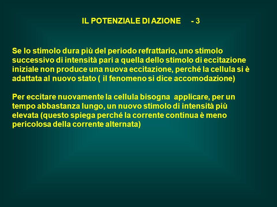 IL POTENZIALE DI AZIONE - 3