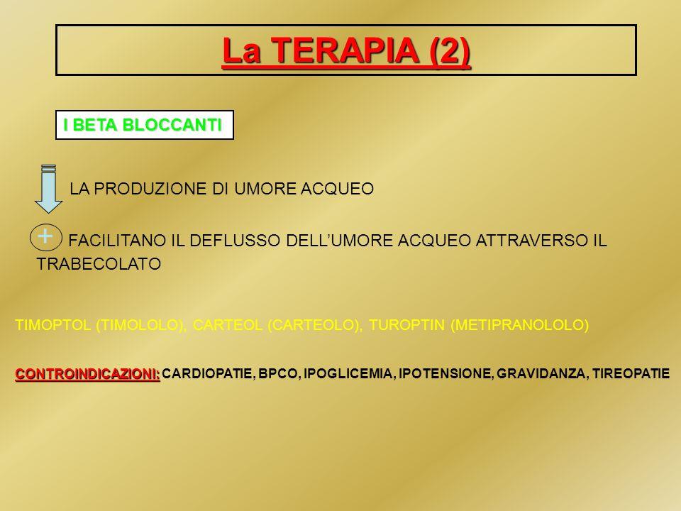 La TERAPIA (2)I BETA BLOCCANTI. LA PRODUZIONE DI UMORE ACQUEO. + FACILITANO IL DEFLUSSO DELL'UMORE ACQUEO ATTRAVERSO IL TRABECOLATO.