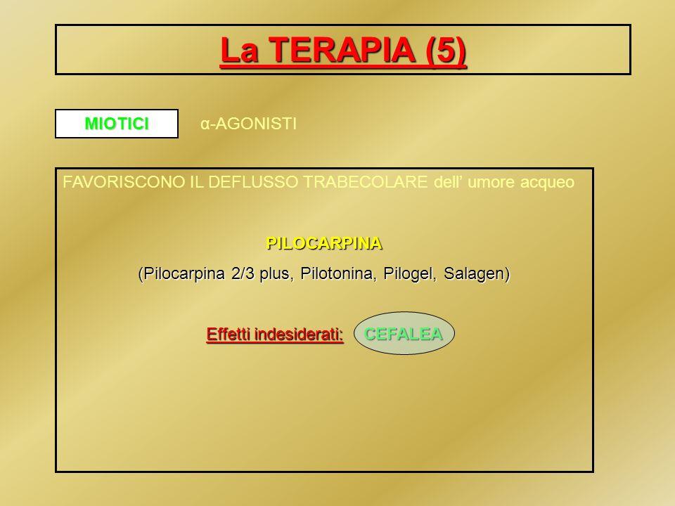 La TERAPIA (5) MIOTICI α-AGONISTI