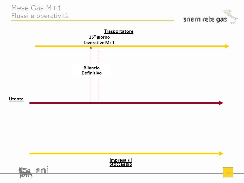 Mese Gas M+1 Flussi e operatività