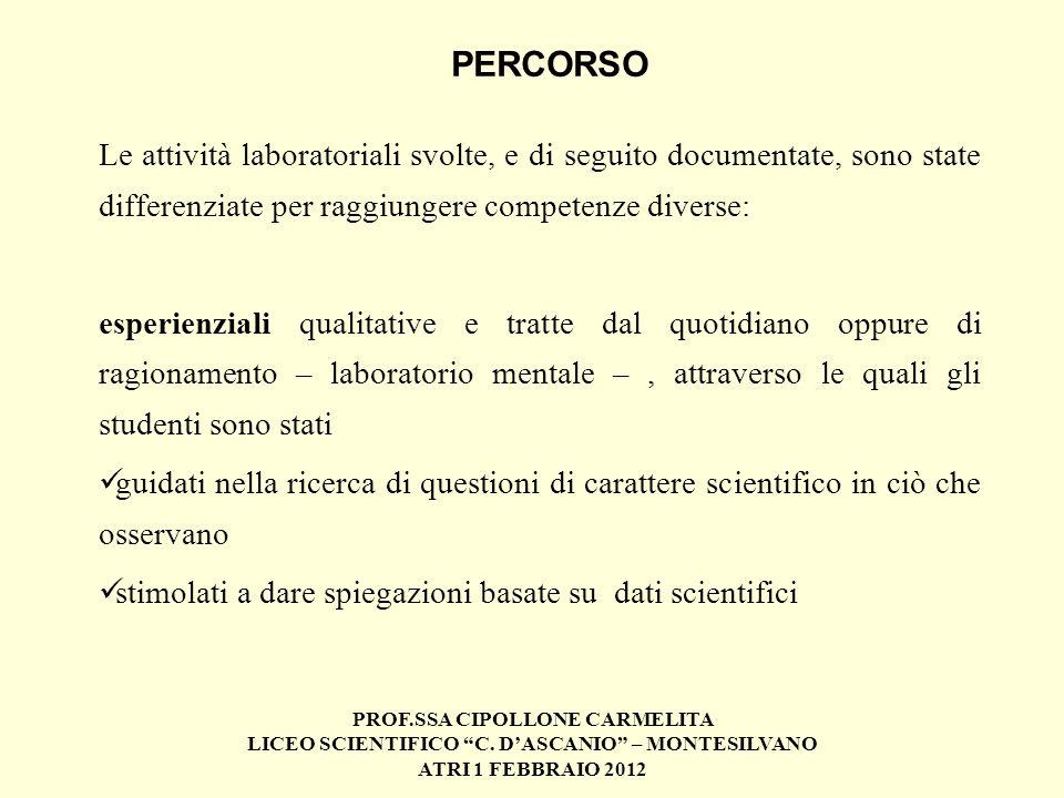 PERCORSO Le attività laboratoriali svolte, e di seguito documentate, sono state differenziate per raggiungere competenze diverse: