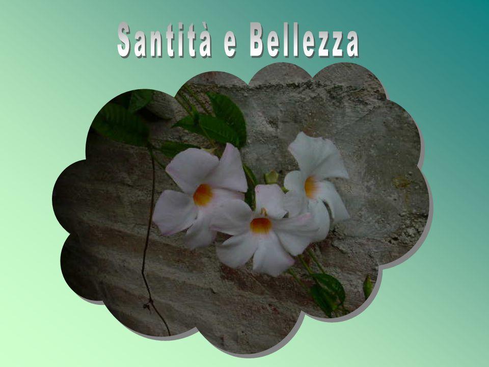 Santità e Bellezza