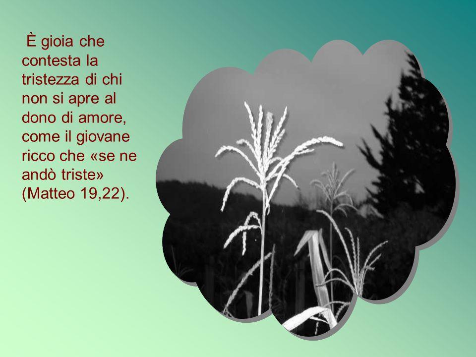 È gioia che contesta la tristezza di chi non si apre al dono di amore, come il giovane ricco che «se ne andò triste» (Matteo 19,22).