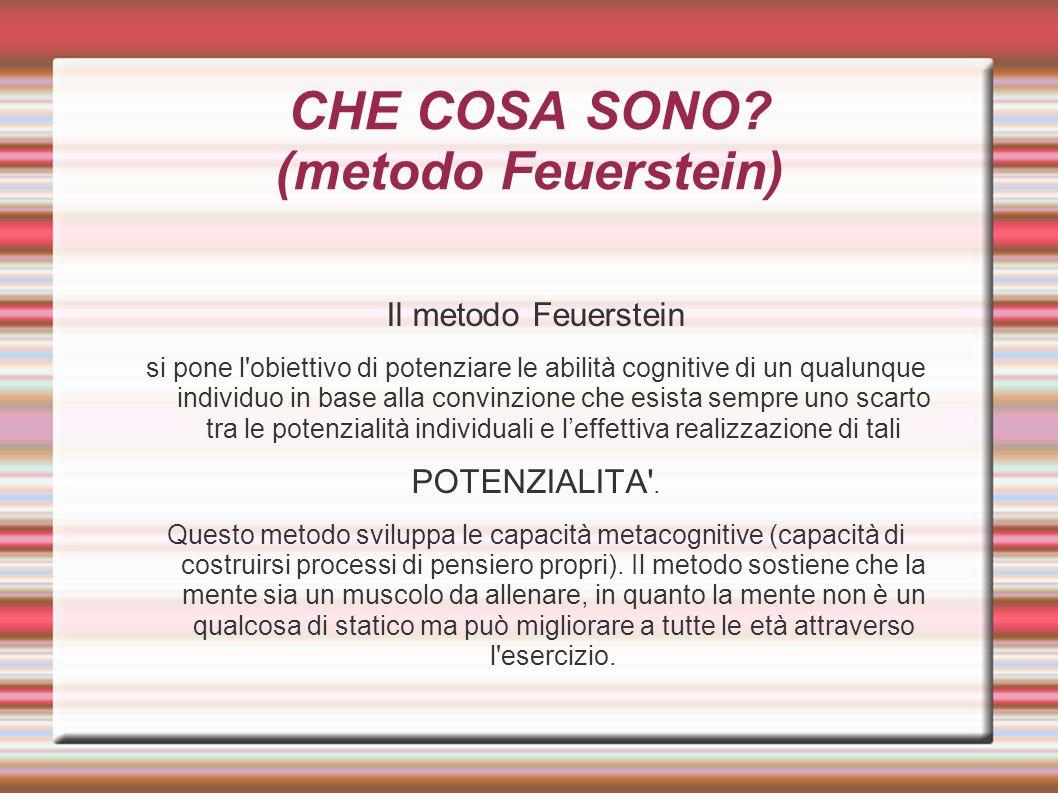 CHE COSA SONO (metodo Feuerstein)