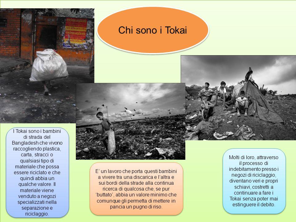 Chi sono i Tokai