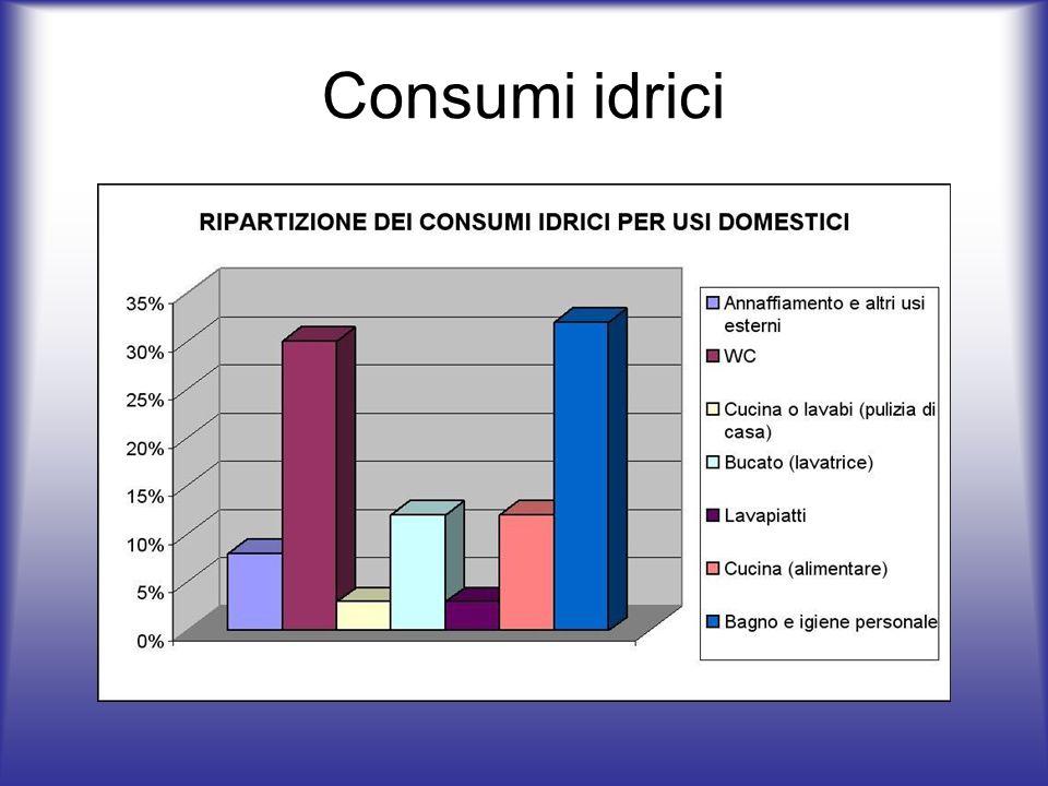 Consumi idrici