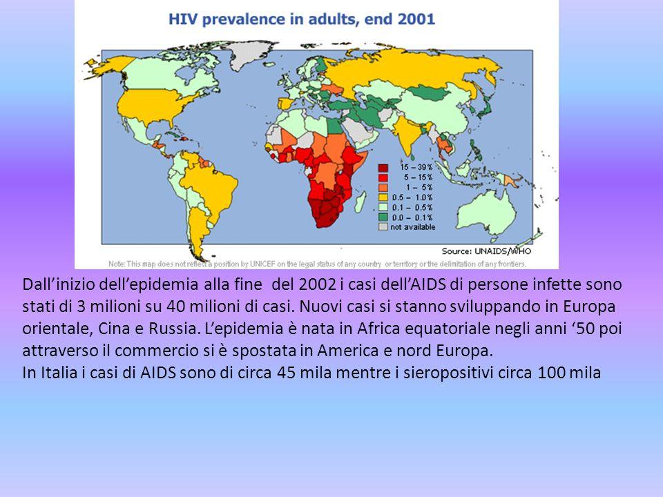 Dall'inizio dell'epidemia alla fine del 2002 i casi dell'AIDS di persone infette sono stati di 3 milioni su 40 milioni di casi. Nuovi casi si stanno sviluppando in Europa orientale, Cina e Russia. L'epidemia è nata in Africa equatoriale negli anni '50 poi attraverso il commercio si è spostata in America e nord Europa.