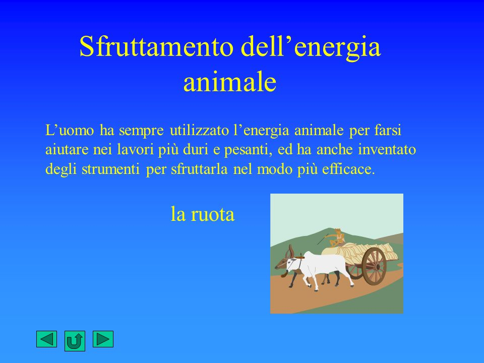 Sfruttamento dell'energia animale