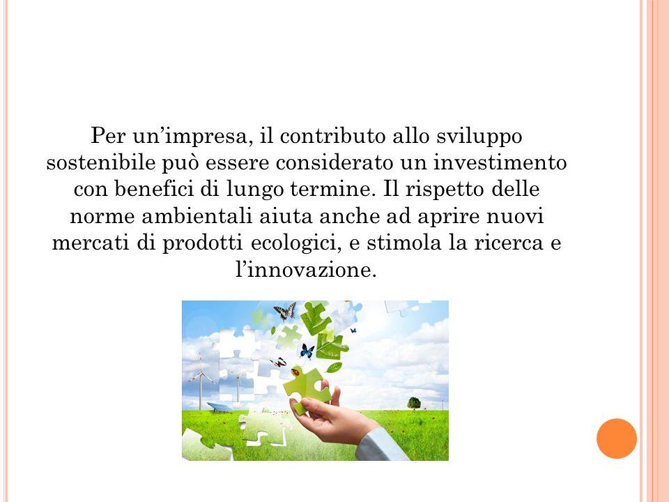 Per un'impresa, il contributo allo sviluppo sostenibile può essere considerato un investimento con benefici di lungo termine.