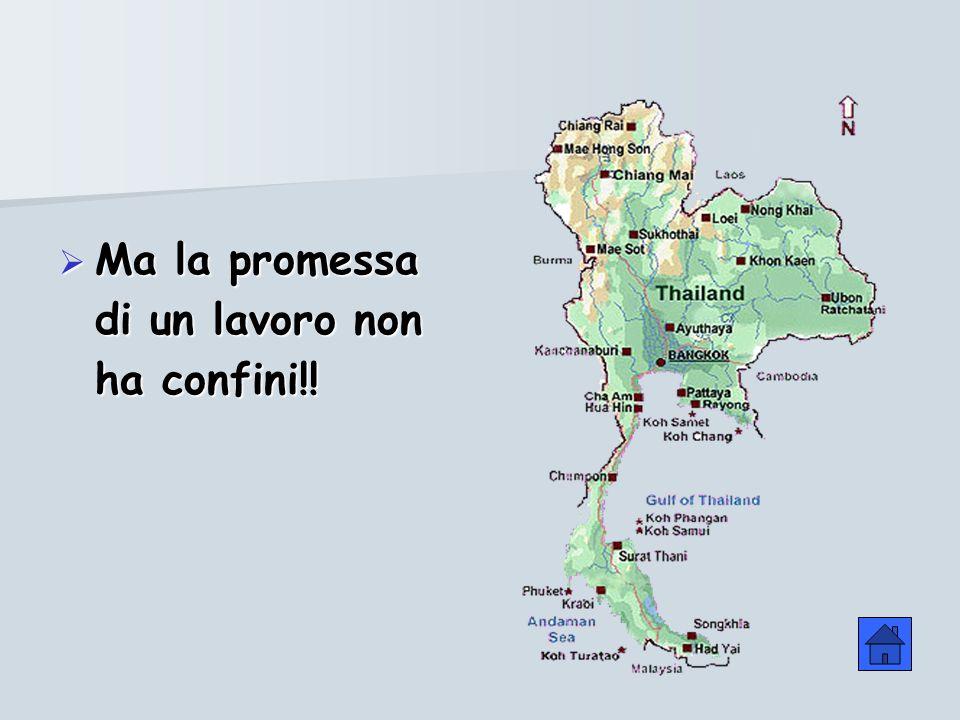 Ma la promessa di un lavoro non ha confini!!