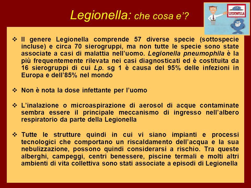 Legionella: che cosa e'