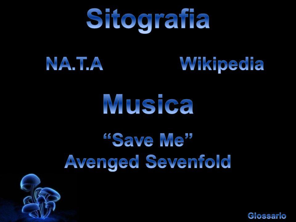 Sitografia Musica NA.T.A Wikipedia Save Me Avenged Sevenfold
