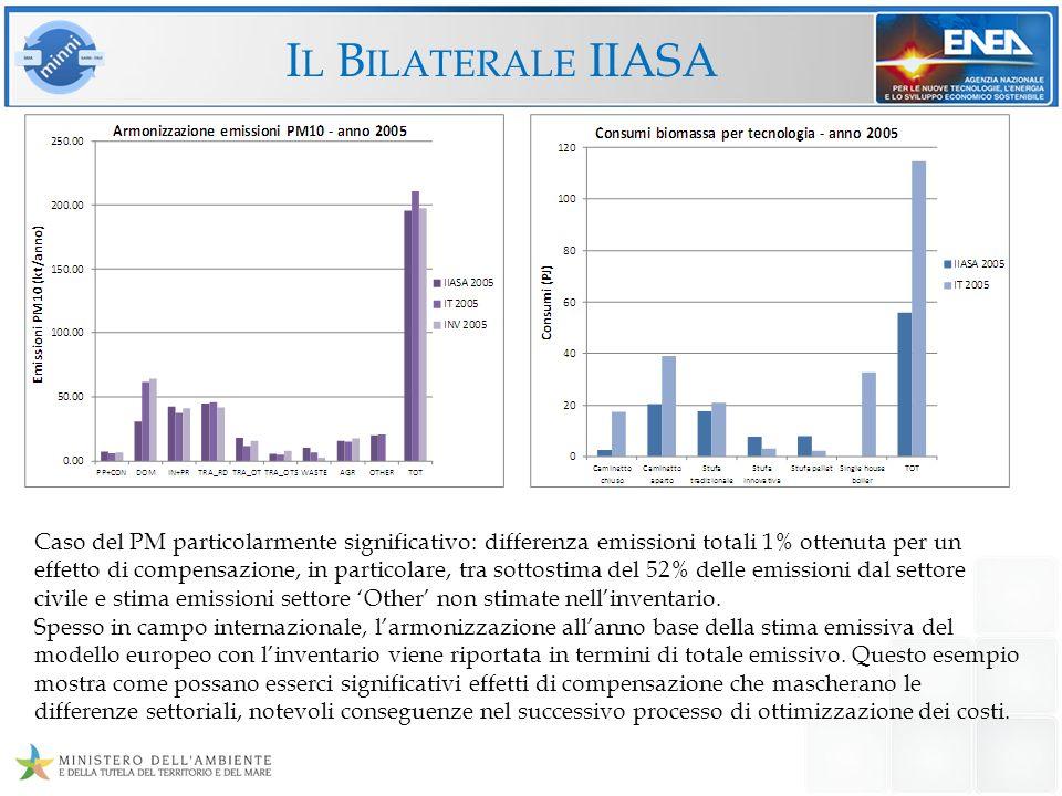 Il Bilaterale IIASA