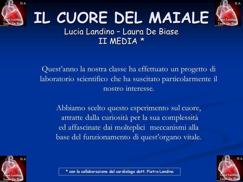 IL CUORE DEL MAIALE Lucia Landino – Laura De Biase II MEDIA *
