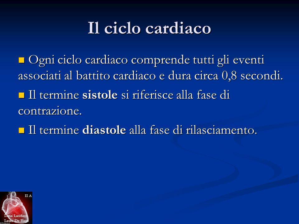 Il ciclo cardiaco Ogni ciclo cardiaco comprende tutti gli eventi associati al battito cardiaco e dura circa 0,8 secondi.