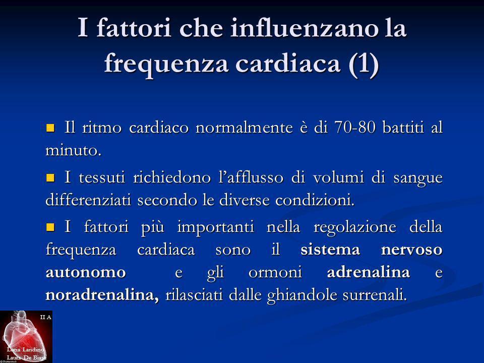 I fattori che influenzano la frequenza cardiaca (1)
