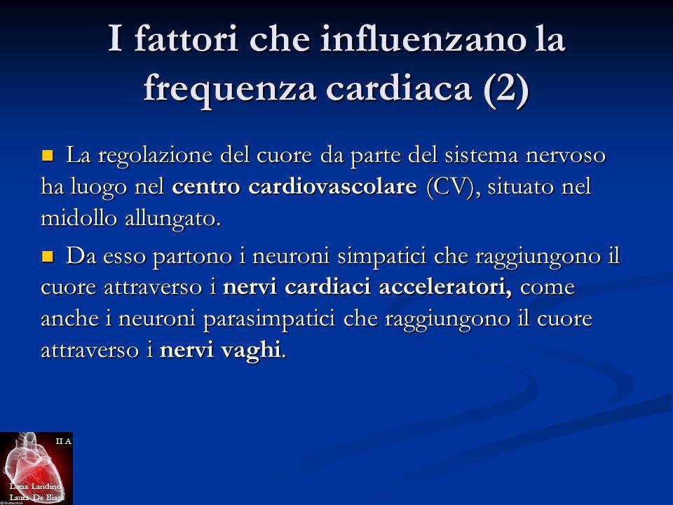 I fattori che influenzano la frequenza cardiaca (2)