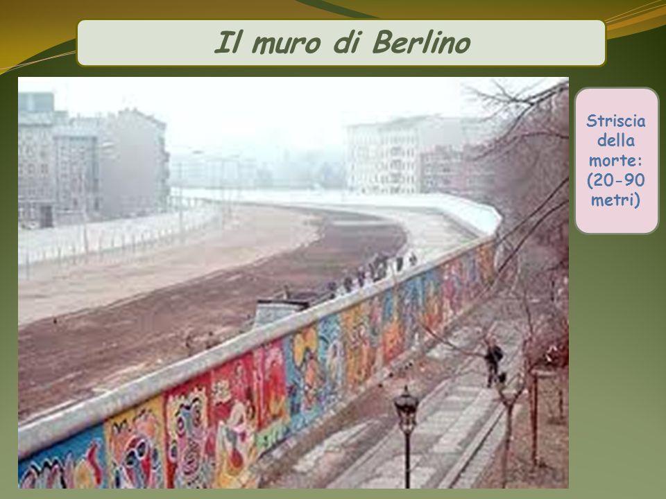 Il muro di Berlino (20-90 metri) Striscia della morte: