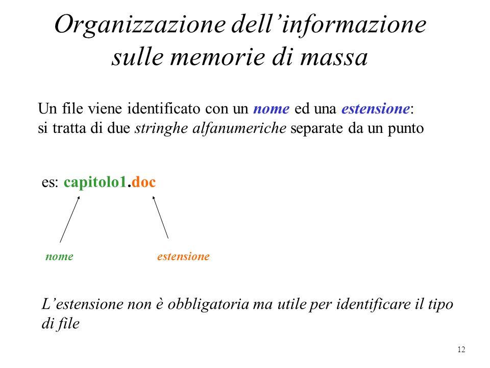 Organizzazione dell'informazione sulle memorie di massa