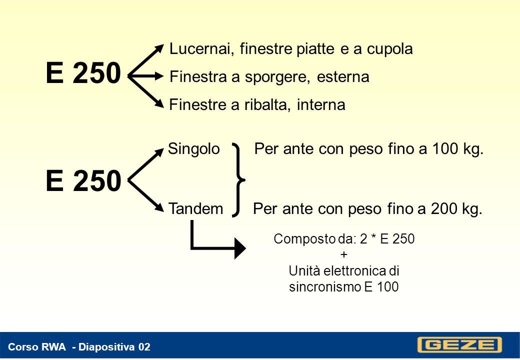 E 250 E 250 Lucernai, finestre piatte e a cupola